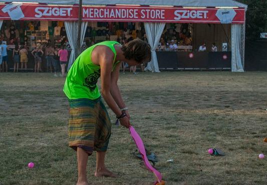 Flamingo croquet forever