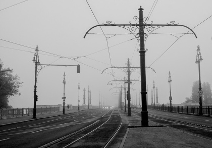 4403b-fog1