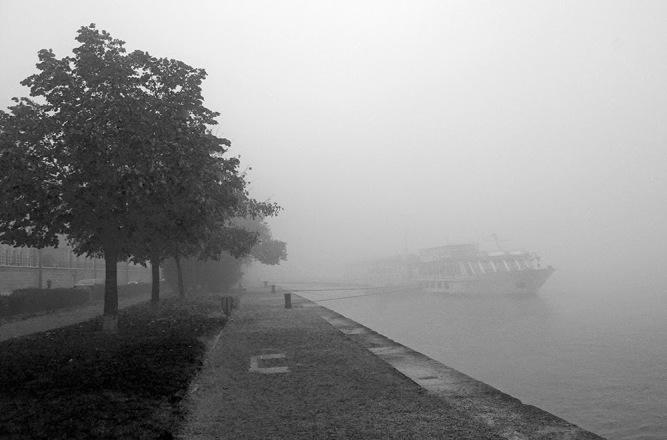 52ae4-fog8