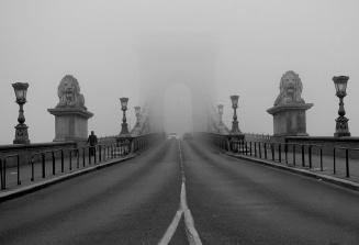 87821-fog10