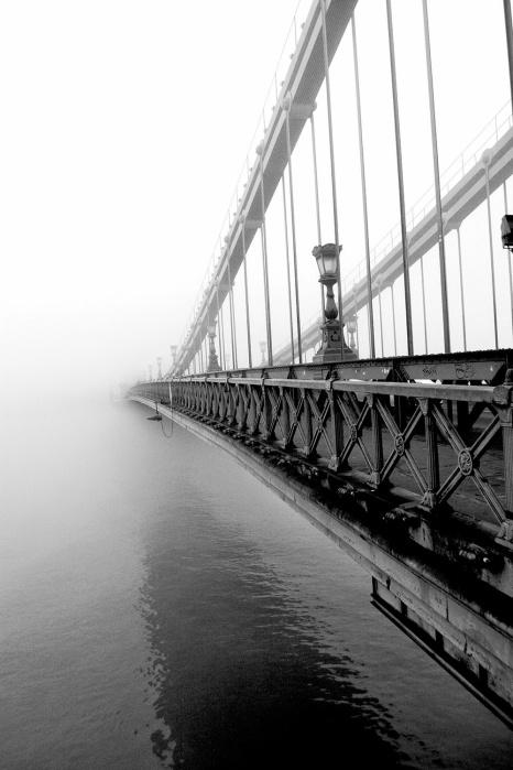 c9e41-fog11