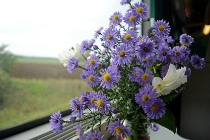 Travelling flowers