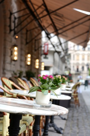 Spring on the terrace of Café Callas