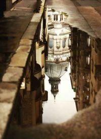 Saint Stephen's Basilica reflected after the rain