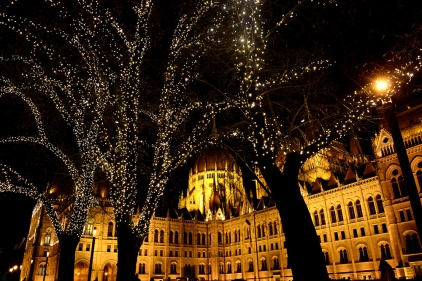 Parliament with Christmas lights