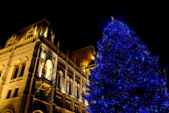 Christmas tree at the Parliament