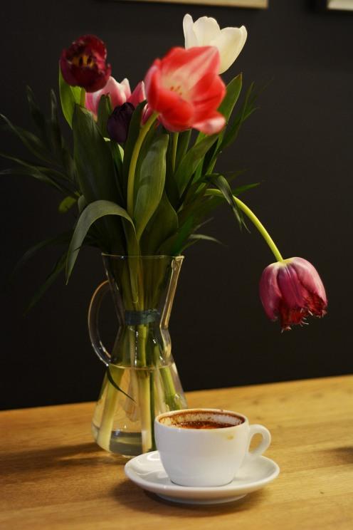 Tulips/Espresso Embassy