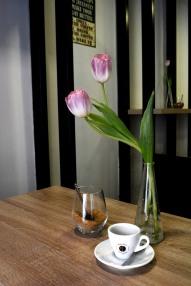 Tulips/Budapest Baristas