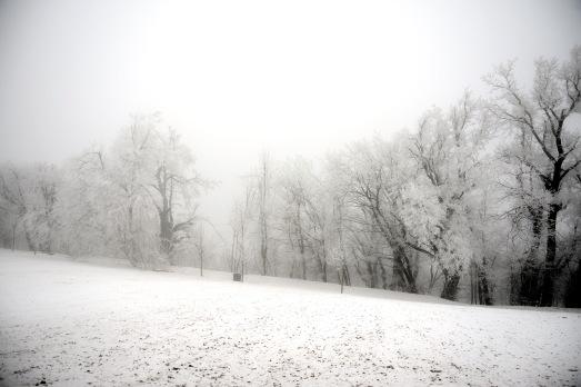 Winter at Normafa