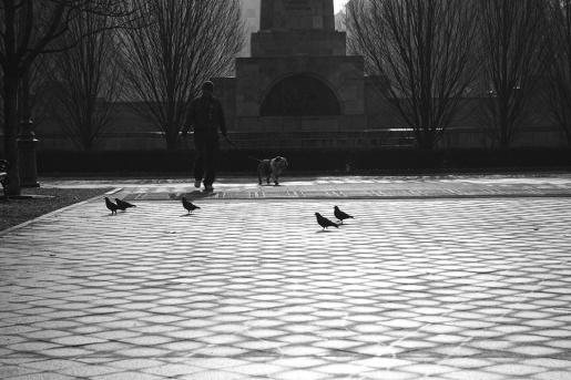 Szabadság square