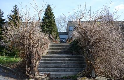 Budai Arborétum