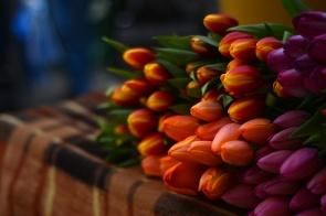 Hunyadi market