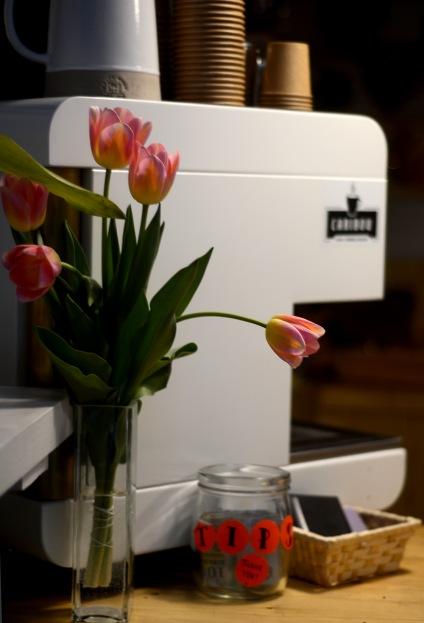Gratuitous tulips- Juicy edition