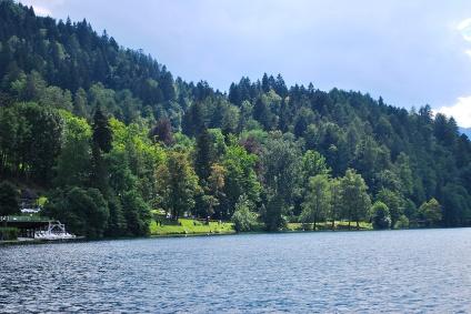 Bled 2011