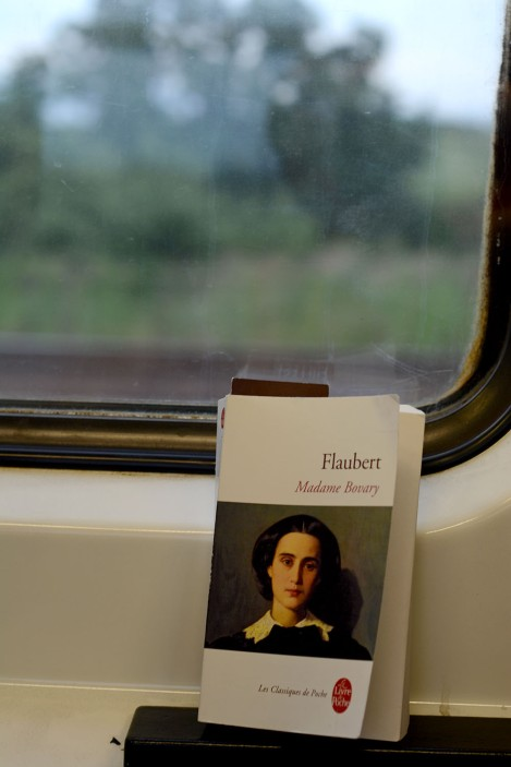Madame Bovary on a journey