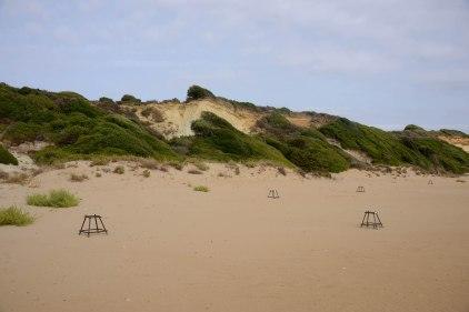 Turtle nests on Gerakas beach