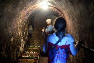 Raiding the cellar in Etyek