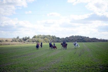 Etyek- horsing around