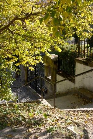 Autumn of Gellért Hill