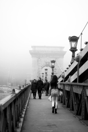 January Fog along the Danube