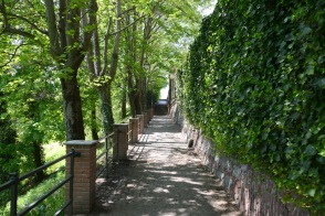 Turin- behind the Basilica at Superga