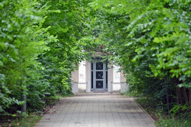 Leafy Mátyásföld