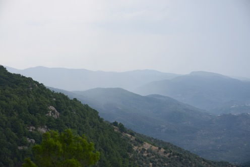 View from the Altar of Zeus