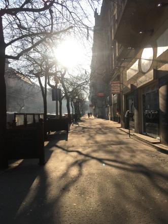 Late winter morning sun.