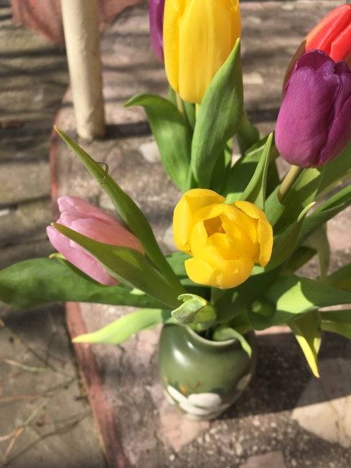 As I was saying, tulips