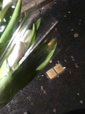 Terribly out of focus tulips+Stolpersteine on Király street