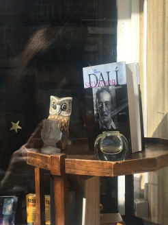 Bookstore window owl