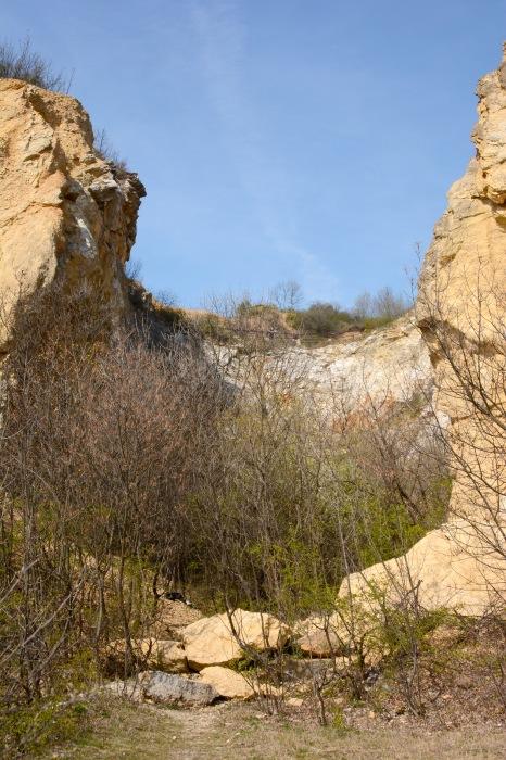 Róka-hegy
