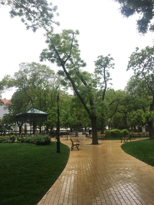 Rain on Hunyadi square
