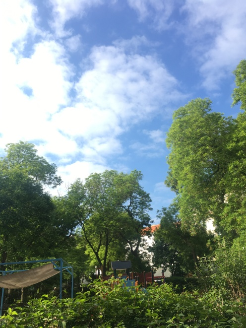 Morning sky over Hunyadi square