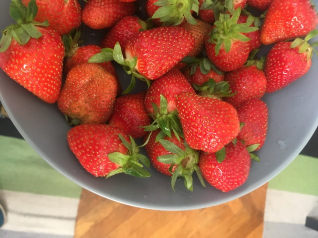 Strawberry season (the first always taste the best too)