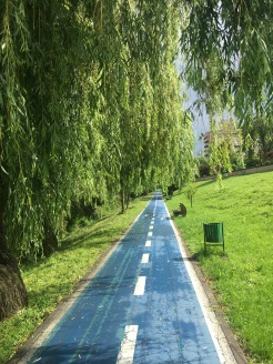 Blue asphalt road