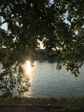 Evening run snapshot