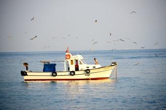 View from Kușadası Güvercinada- Pigeon Island
