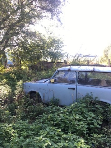 Trabi in the thicket