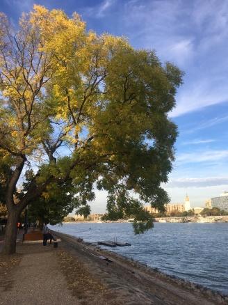 Autumn on Margaret Island