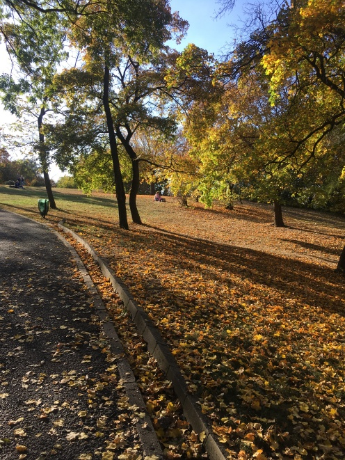 Autumn on Gellért Hill