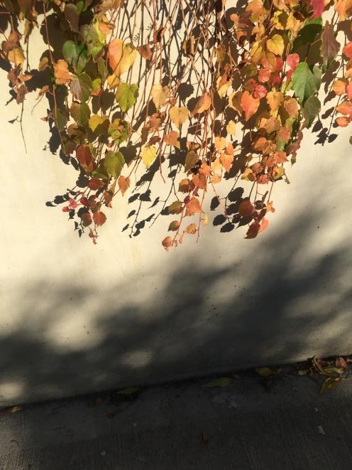Autumn in the Castle