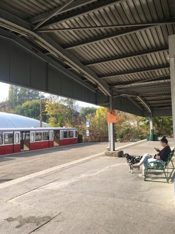 Cogwheel train station