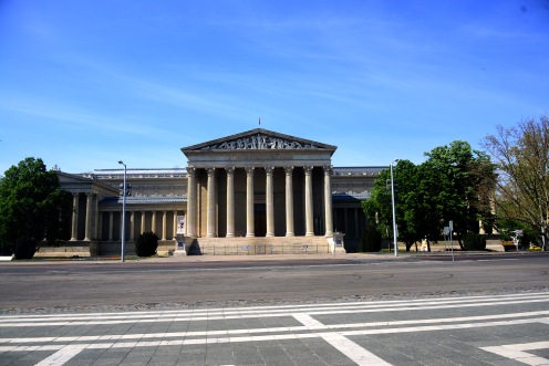The Museum of Fine Arts