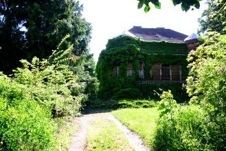 Villa on Dezső street