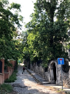 Minerva street