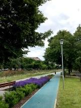 Kubala Park